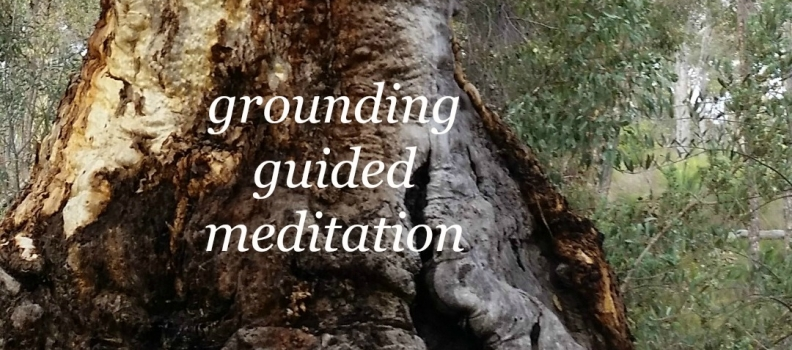 Grounding guided meditation