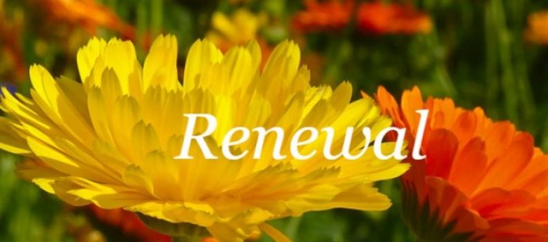 Renewal guided meditation